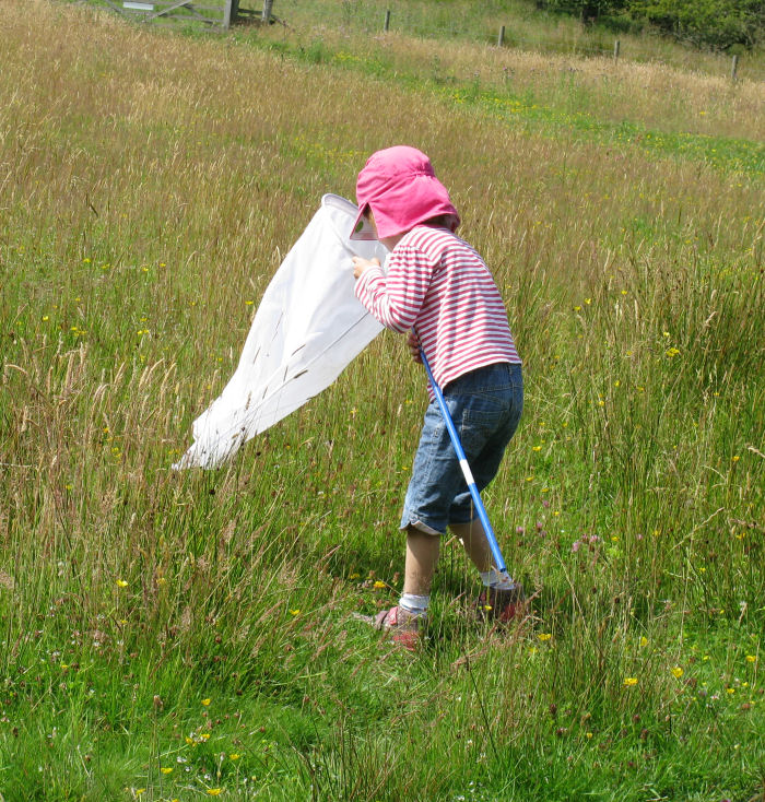 child sweep netting on the moor