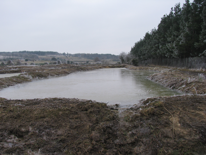 Wetland in January 2009