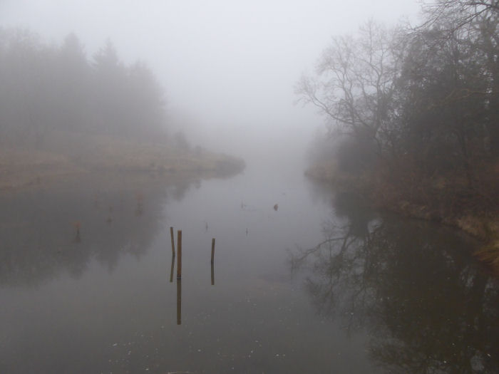 The lake shrouded in mist