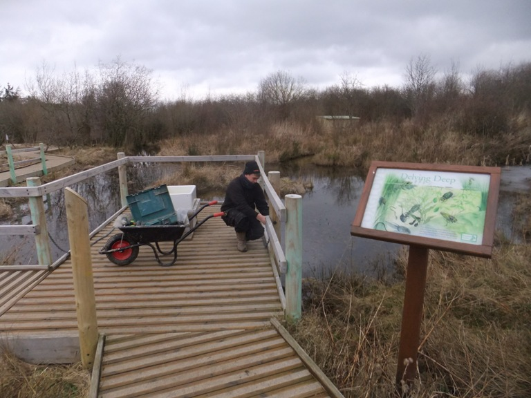 Pond dipping platform