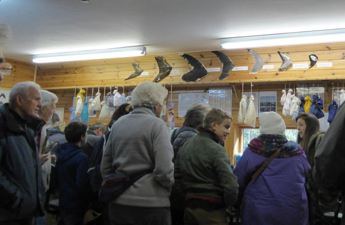 Visitors in the ringing room