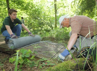 Volunteers at Foxglove Covert Local Nature Reserve